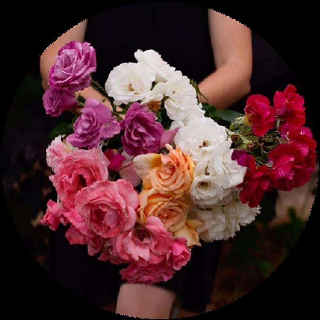 Heart & Soil Homestead   Laura - Flower Farmer/Boutique Nursery