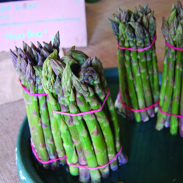 Fresh asapagus ready to buy