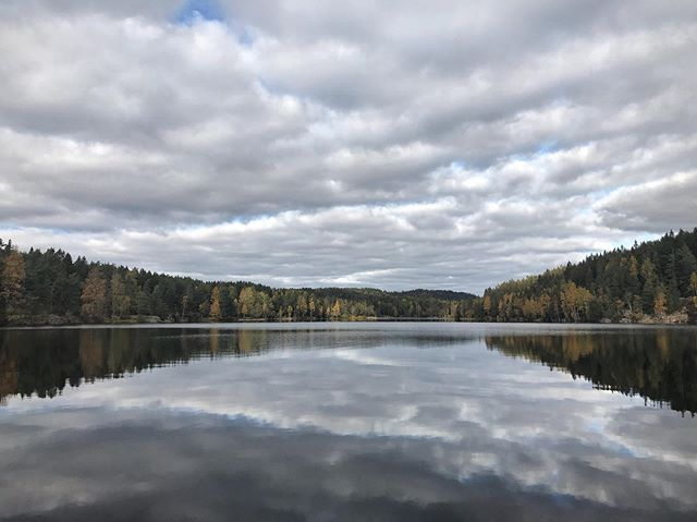 A quick hello 👋 from the northern parts of Oslo, where all is well and calm 🍂🍁