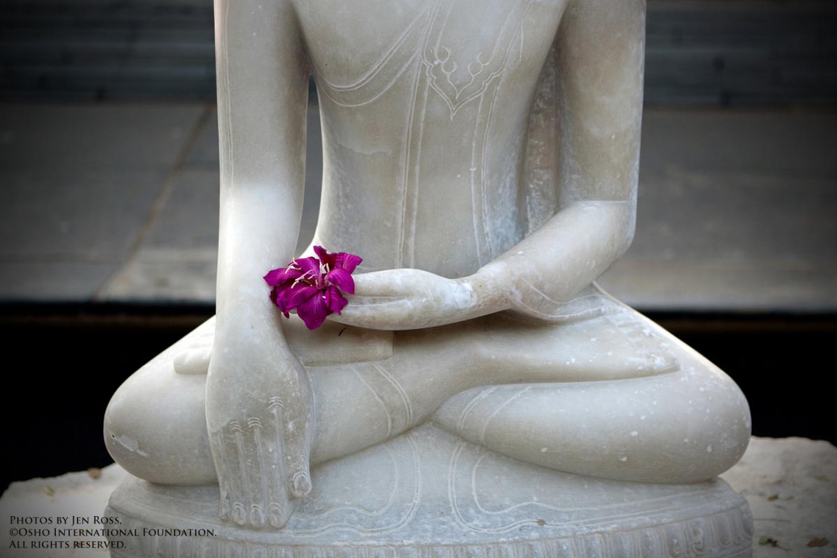 woman in white yoga waterfall.jpg