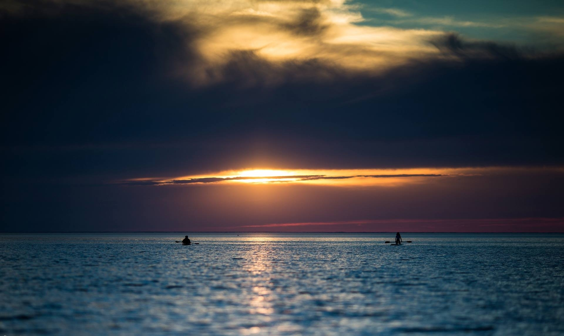 Paddle Board Rentals   We can deliver or come pick up your paddle board rental and make an adventure of your own   Click here