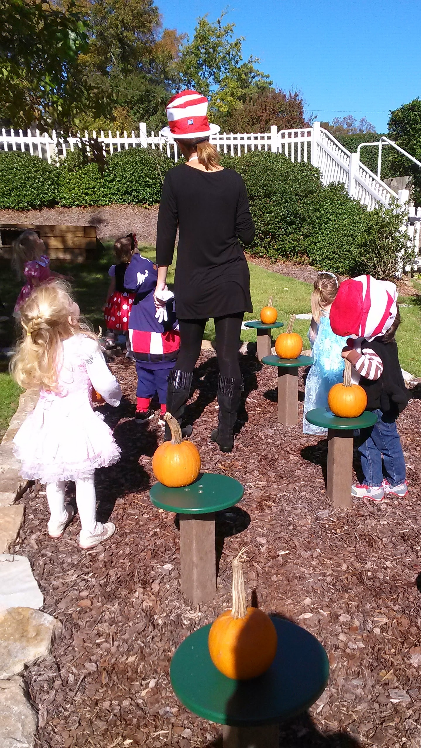 Picking pumpkins in our outdoor classroom.