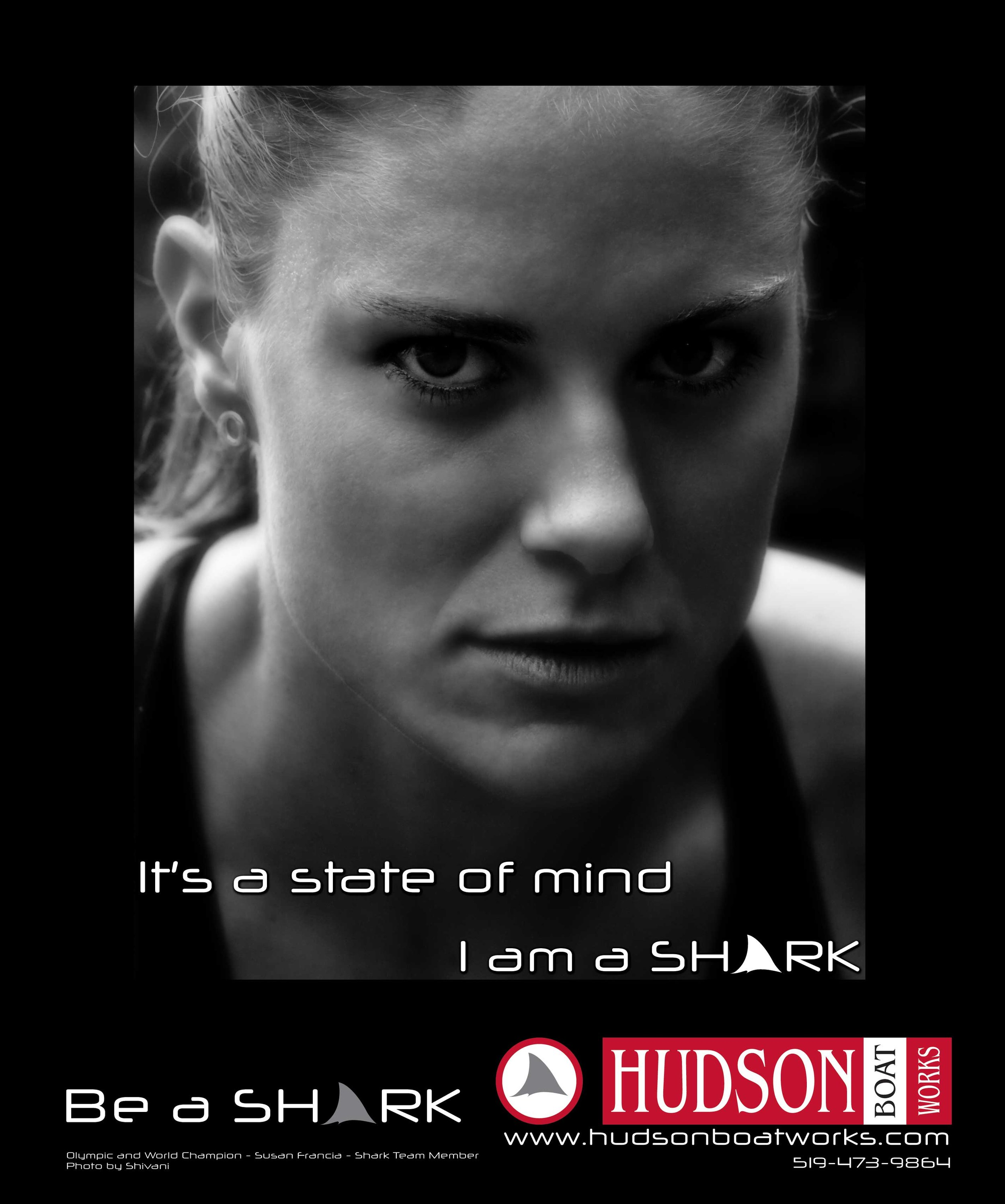Hudson ad.jpg