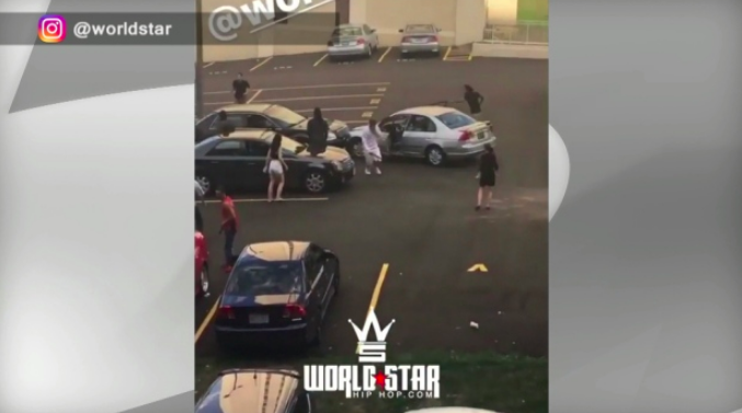 Police probewild brawl in Mississauga parking lot - Police are investigating after a video showing a violent dispute in a parking lot in Mississauga was posted on a popular entertainment website.