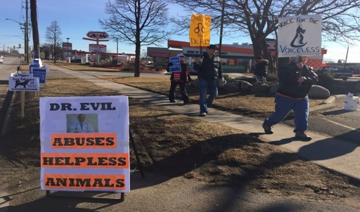 Protest outside Skyway Animal Hospital where vet suspended - A small group of protesters gathered in front of an animal hospital in St. Catharines on Monday to raise awareness about a veterinarian who worked there and was accused of abusing pets.