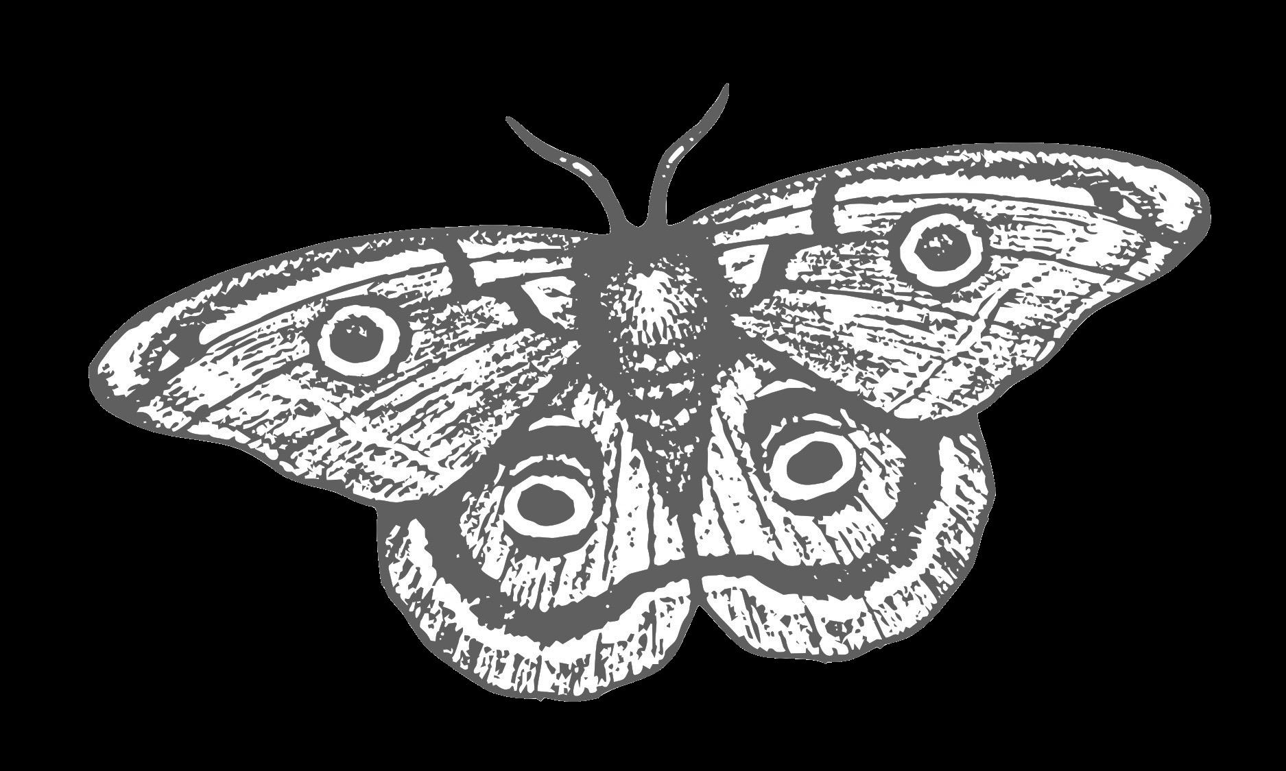 Smoke & Mirrors Logo Final - just moth (1).png