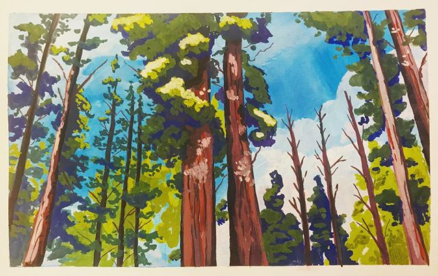 A grove of strong, vibrant Sequoia trees dedicated to my strong, vibrant friend @cdbrands (And painted from their photo too!)