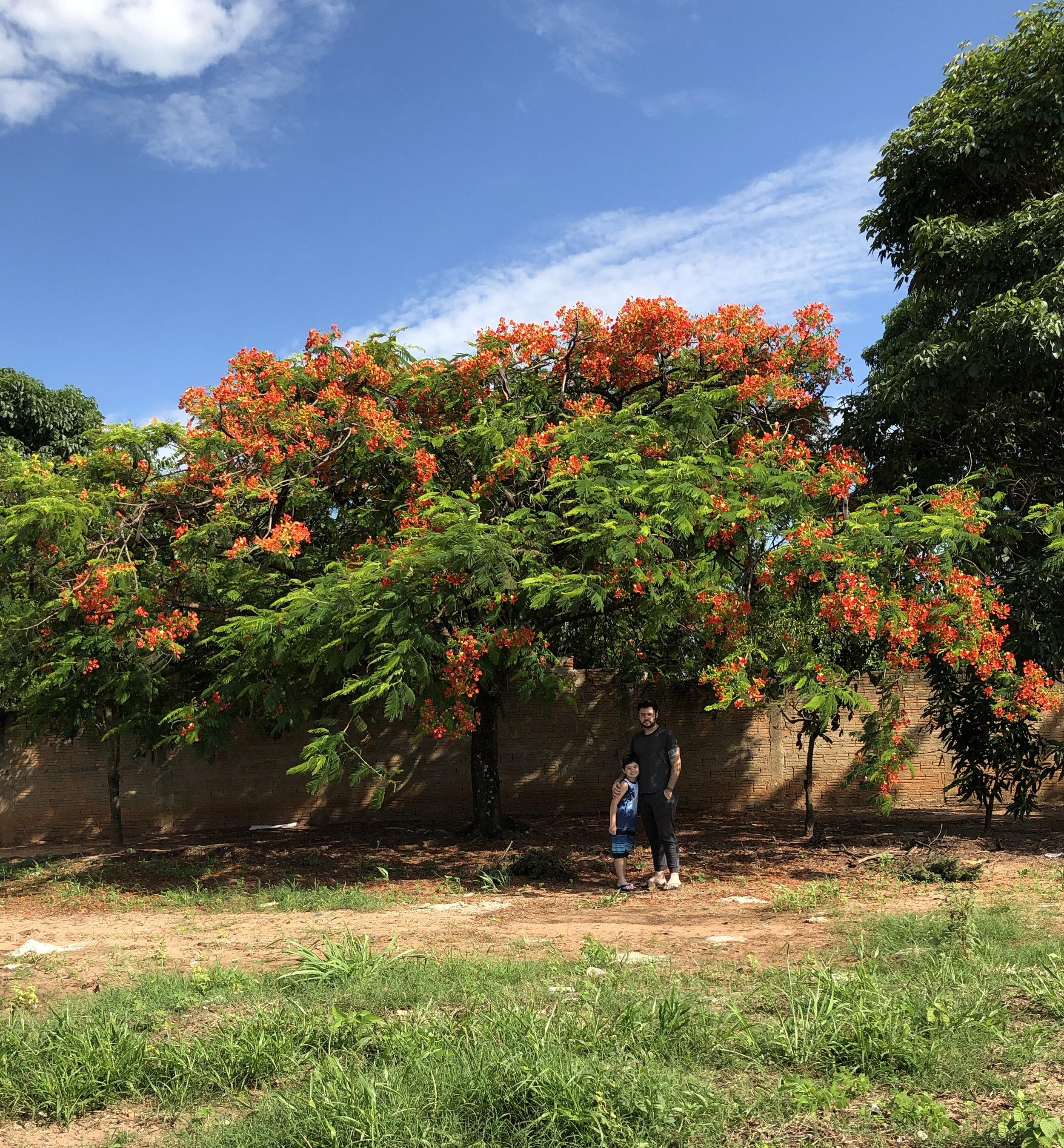 Eu e meu irmão no quintal de casa em Catanduva - São Paulo