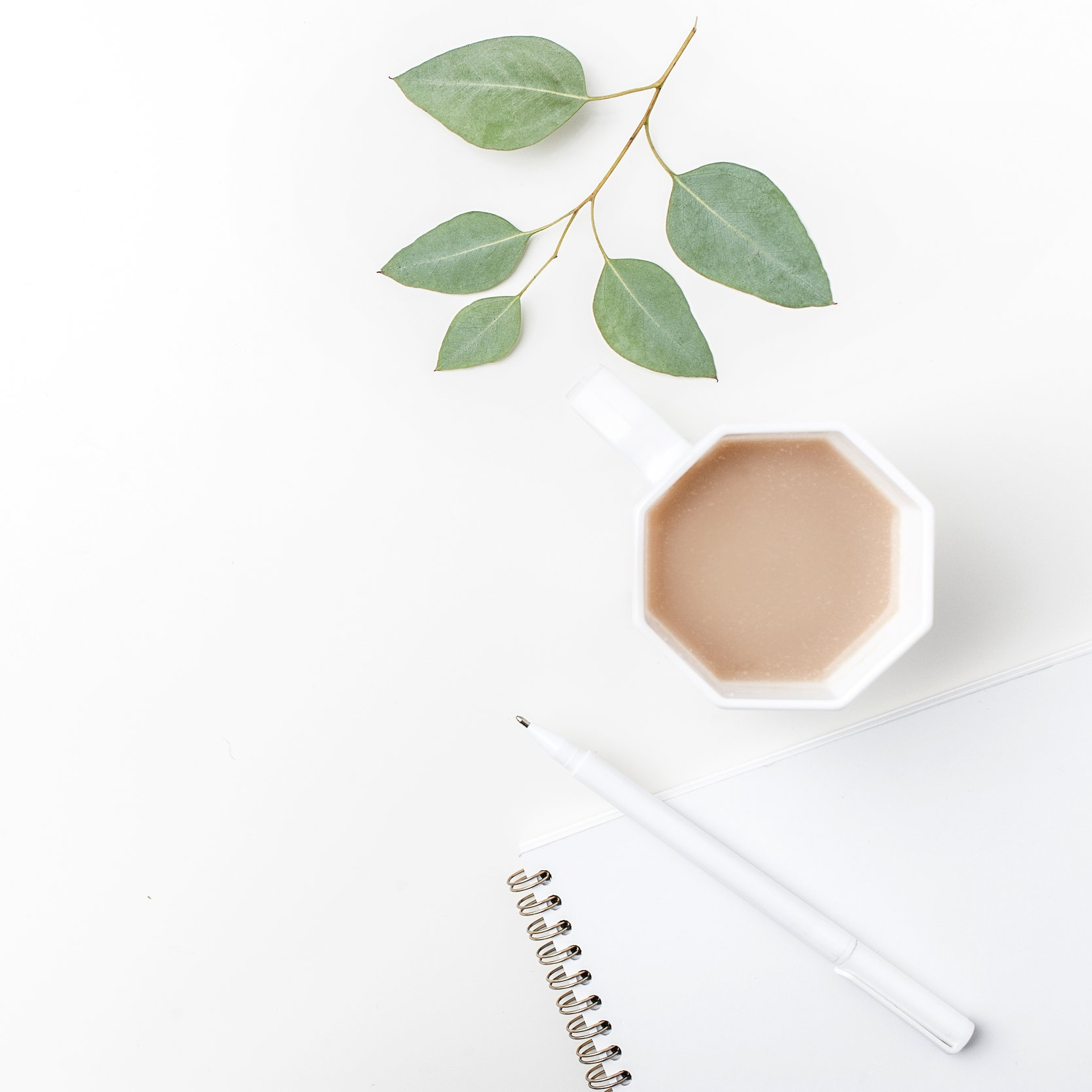 Coffee Twigs Notebook.jpg