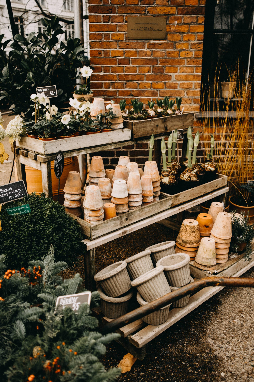 copenhagen-garden