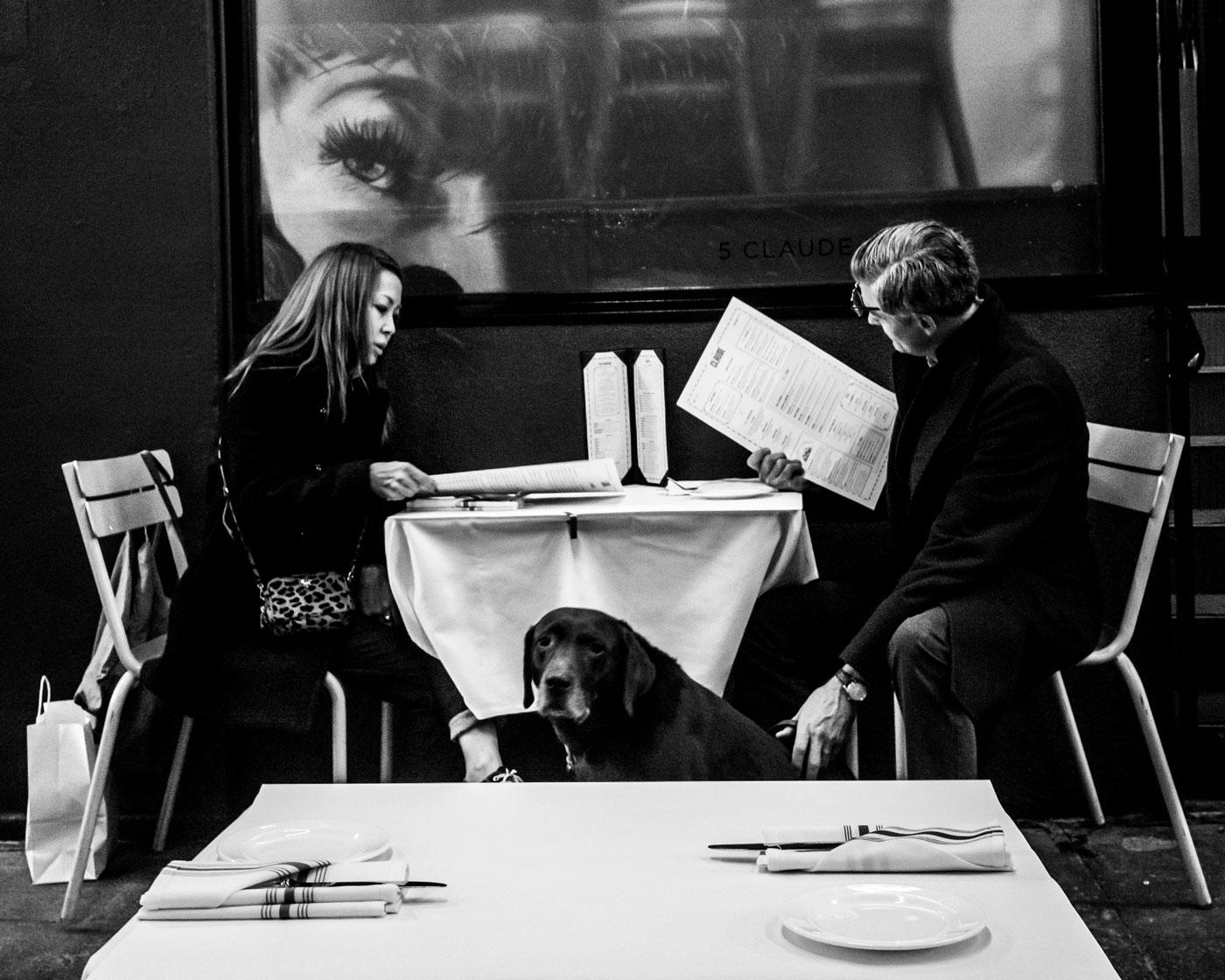 SF dogs dinner-1002024.jpg