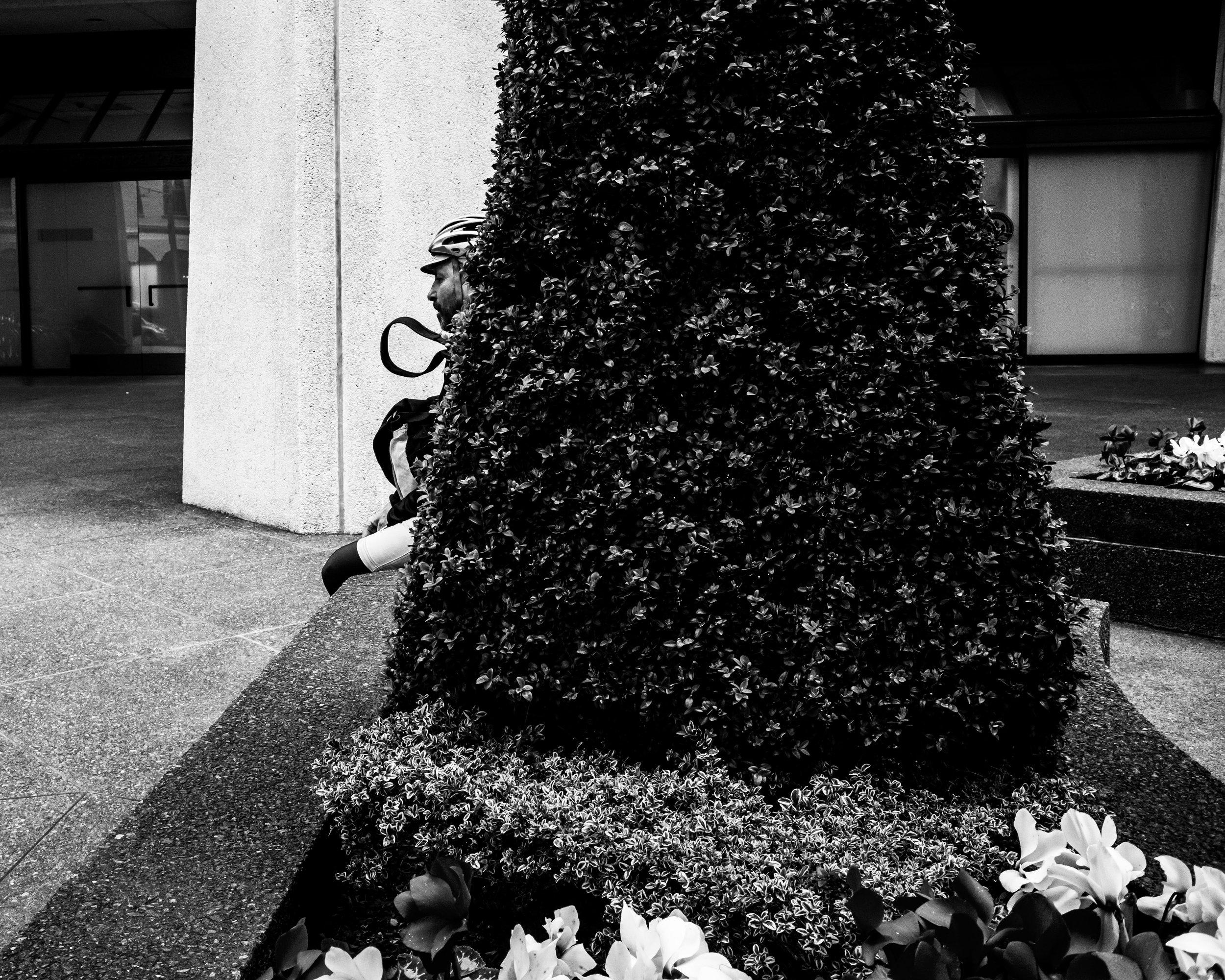 man in bush 2-2.jpg