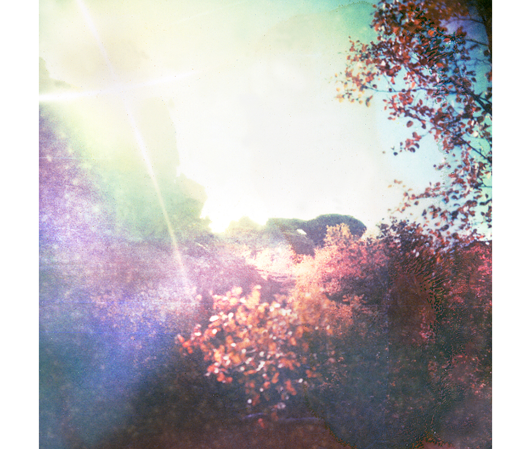 Paul Hoi Group Study A Drop Of Dye Into Water Psychedelia Expired Polaroids from Iceland 9