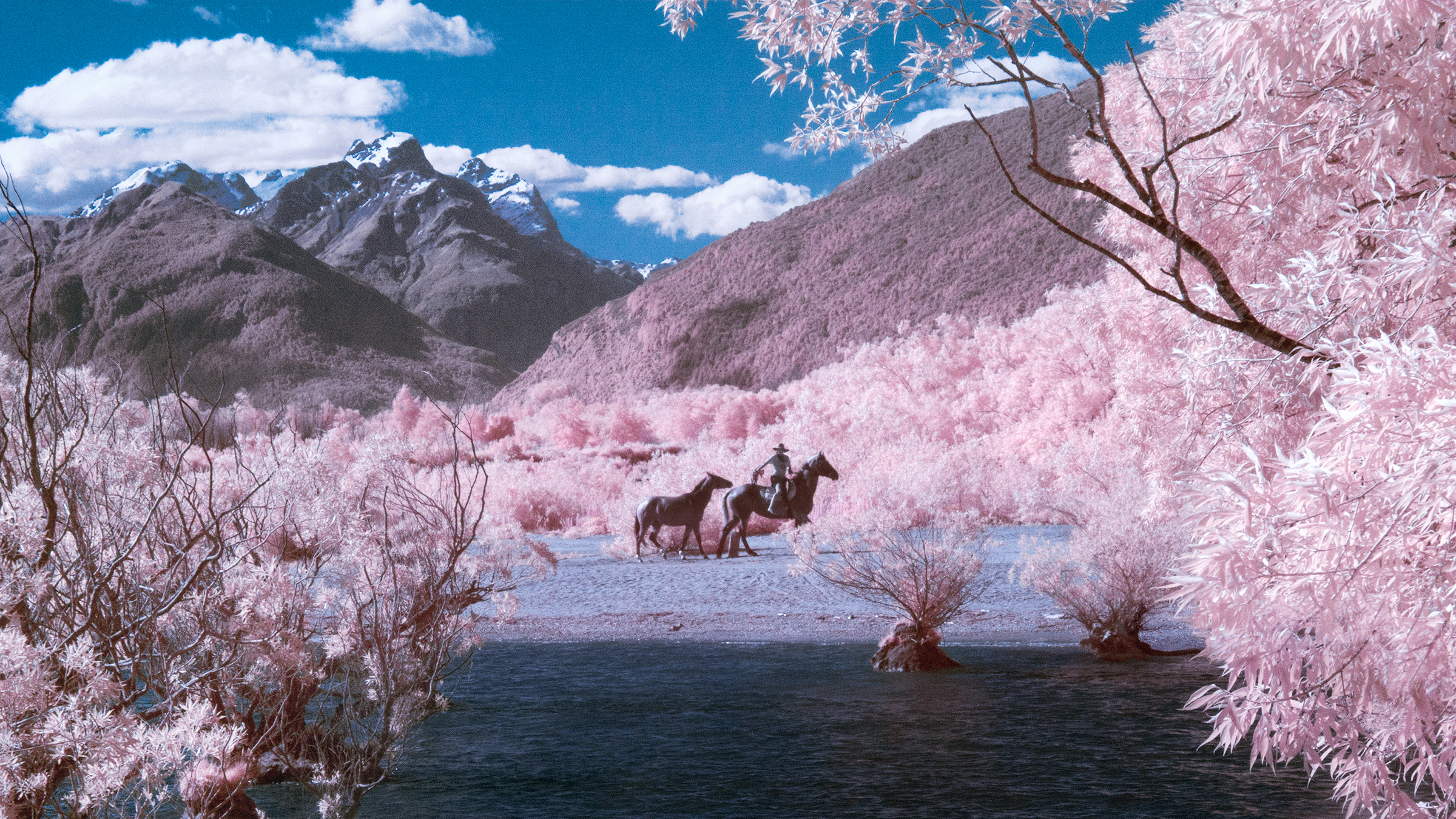Paul Hoi Group Study Infrared Photography New Zealand 12
