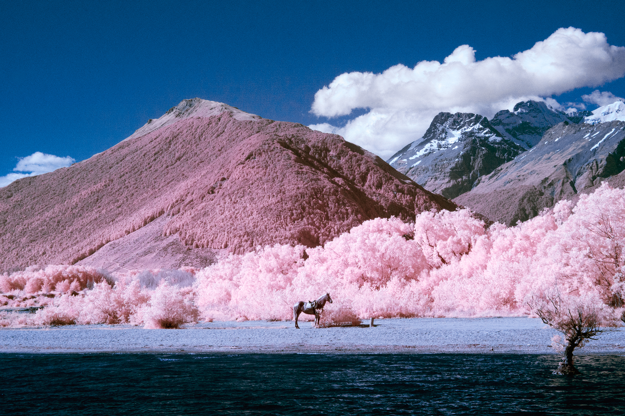 Paul Hoi Group Study Infrared Photography New Zealand 8