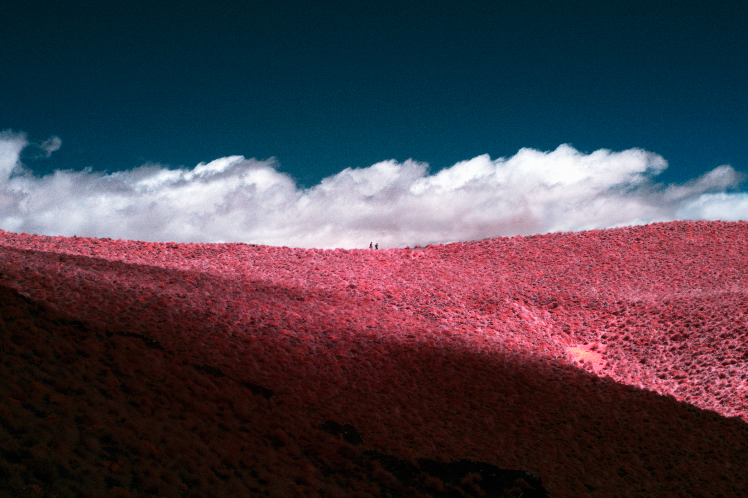 Paul Hoi Group Study Infrared Photography New Zealand 7
