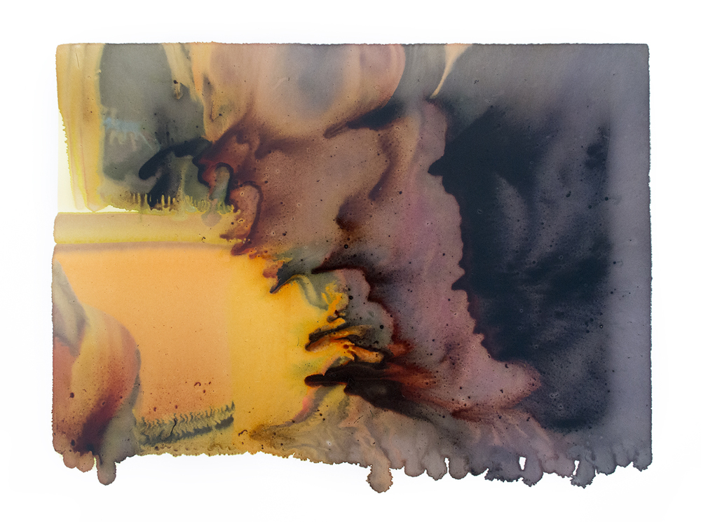 Maureen #2, Archival Pigment Print Photograph, unique, 2015 [from the series Subject to Change]