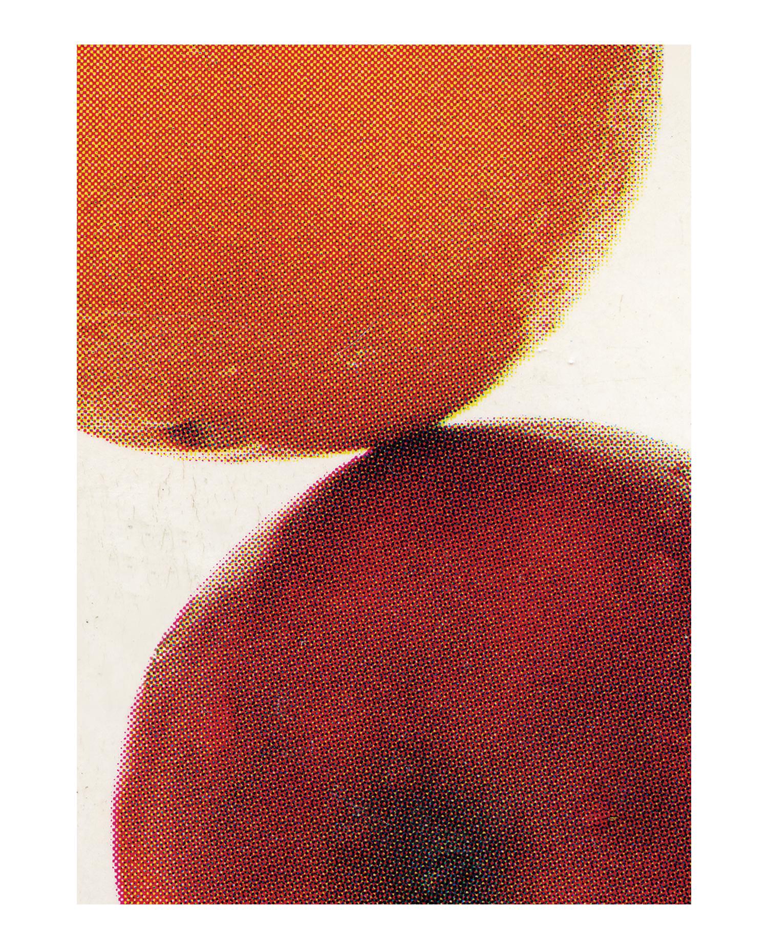 instinctive_nutrition_cmyk_poster_aysia_stieb_apples_oranges_2016.jpg