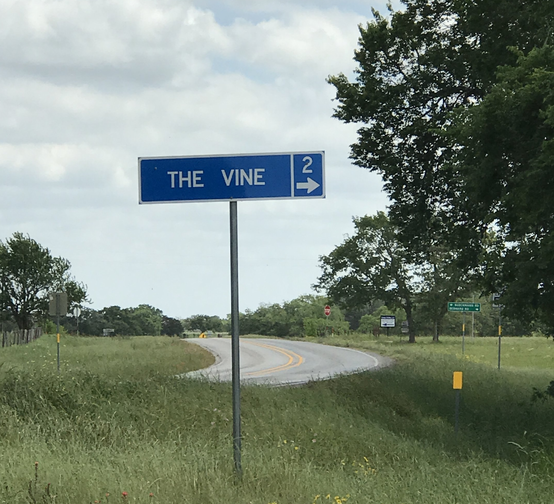 The Vine - The Vine at New Ulm is a wedding venue just minutes from Dry Creek Ranch!