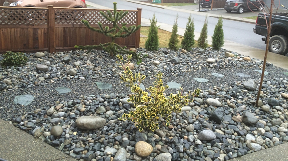 river rock garden, slate pathway and gravel - nanaimo