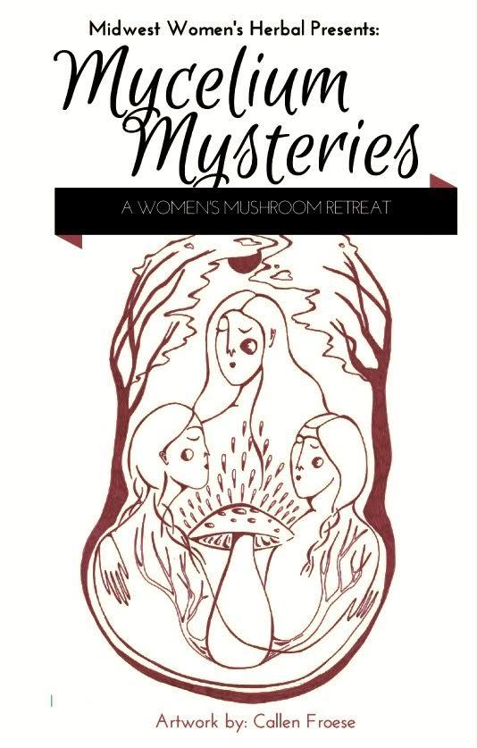 Mycelium Mysteries