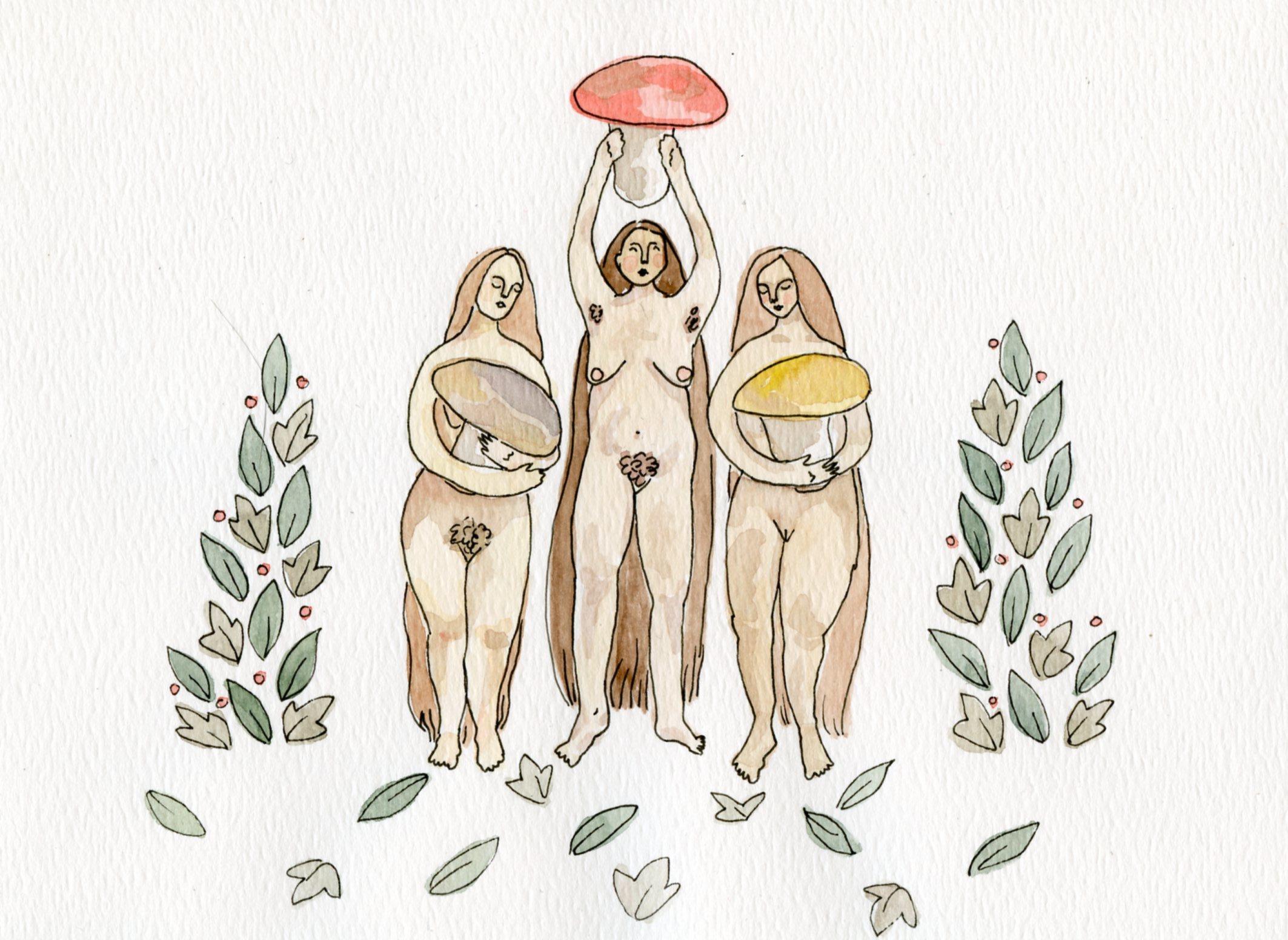 Celebrating Mushrooms