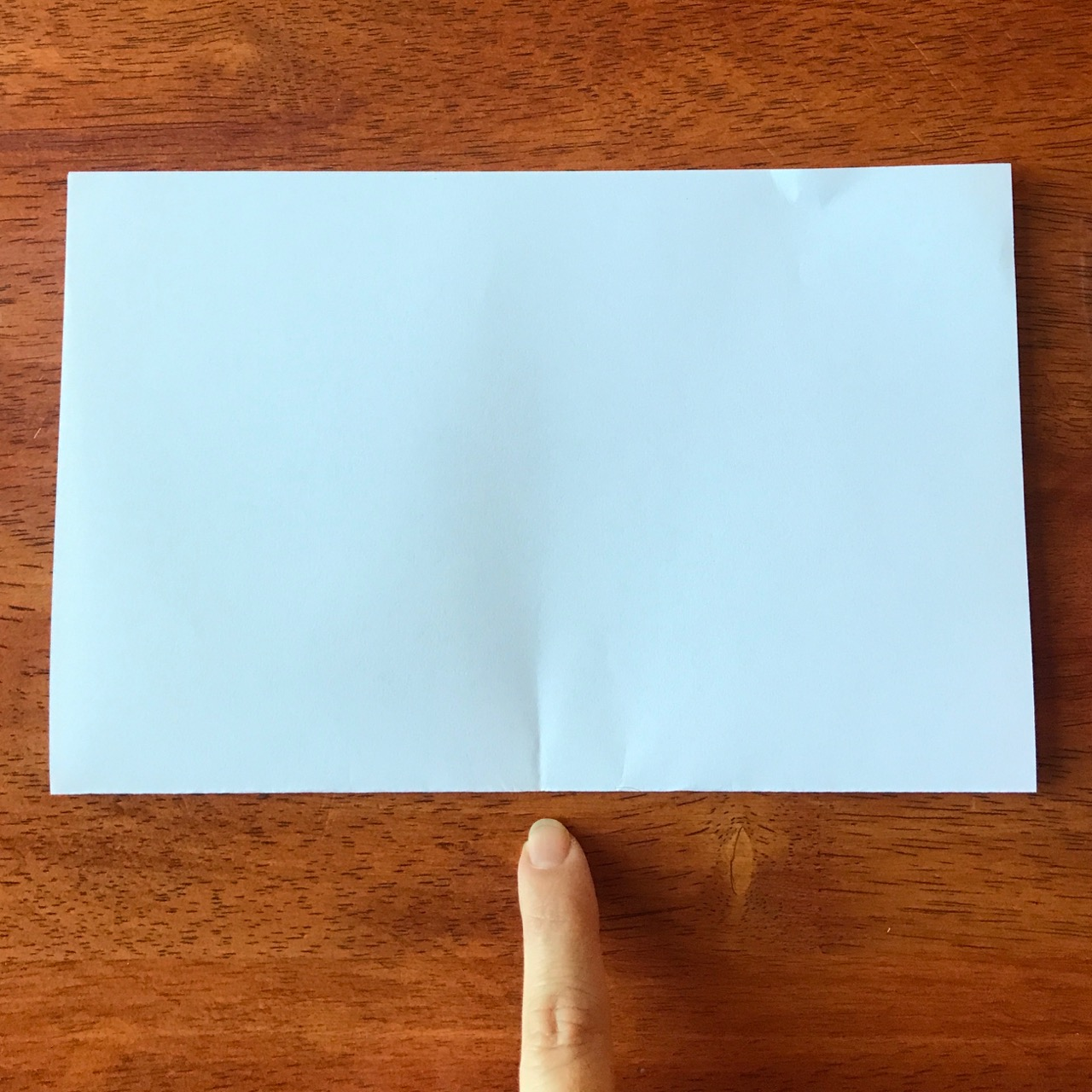 Copy of Fold your paper in half
