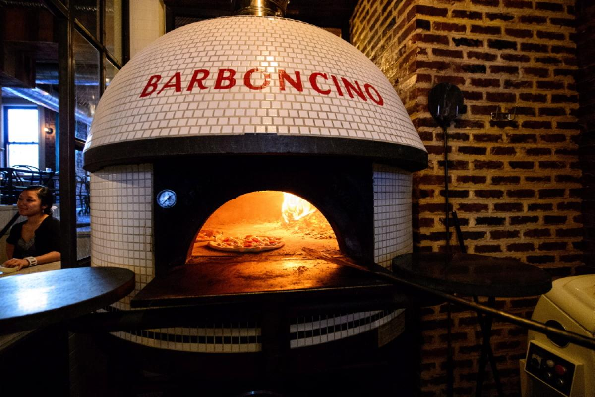 Barboncino -