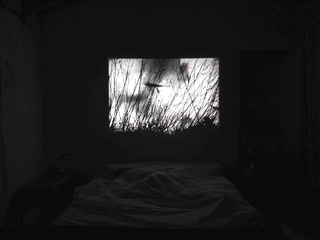 Sleep with me-P8081168.jpg