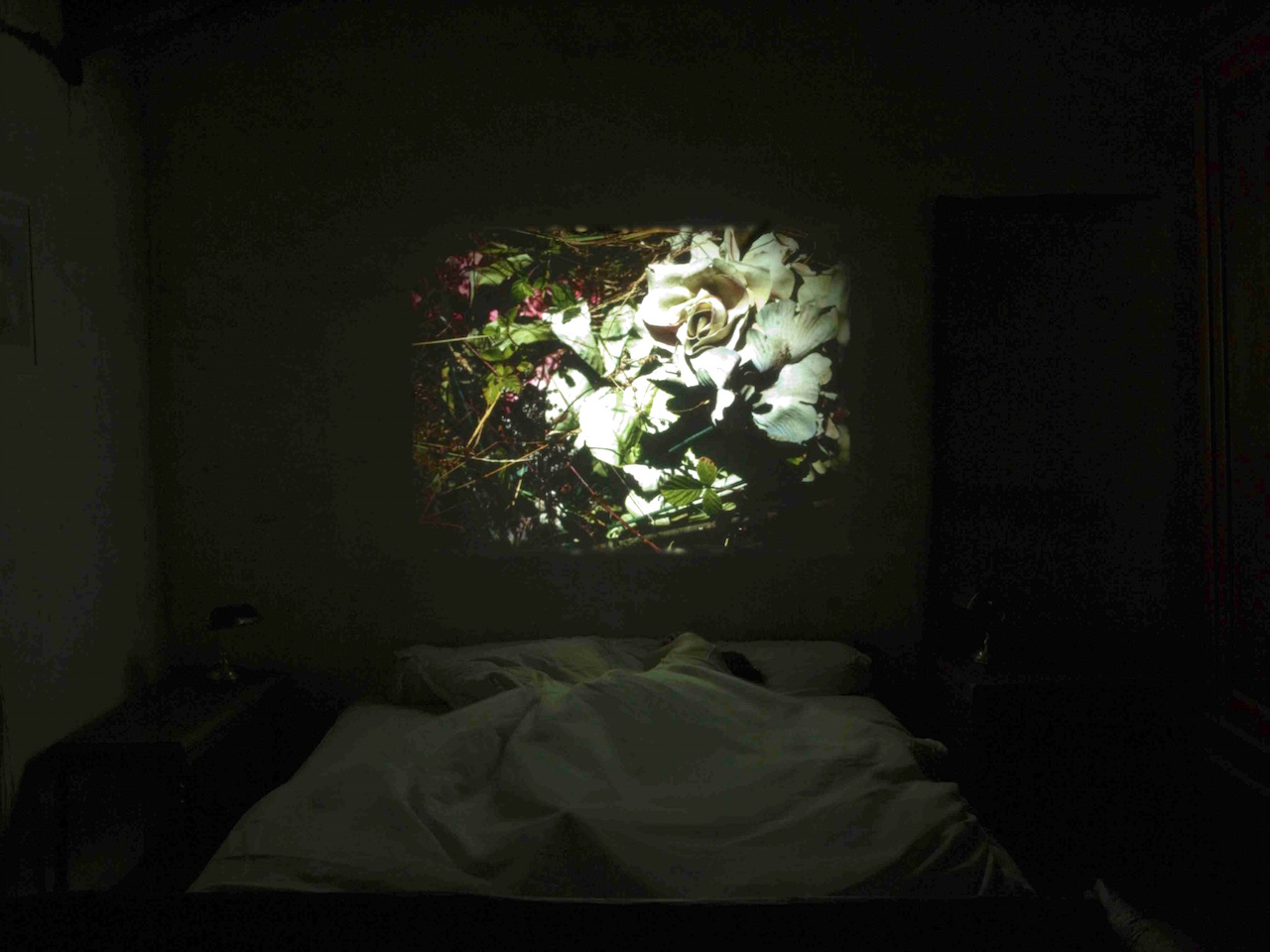 Sleep with me-P8081198.jpg