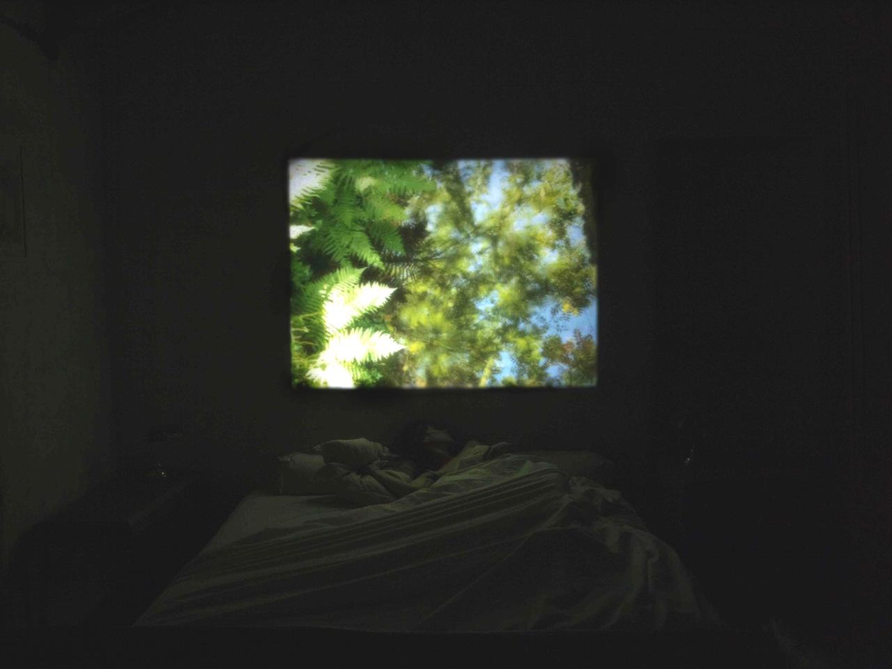 Sleep with me-P8081219.jpg