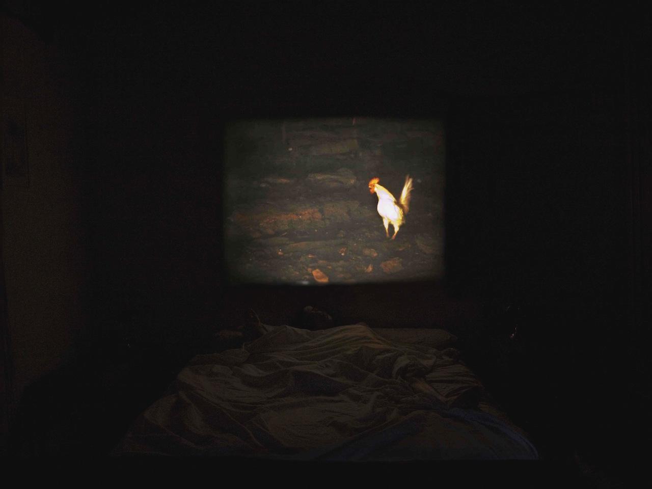 Sleep with me-P8081260.jpg