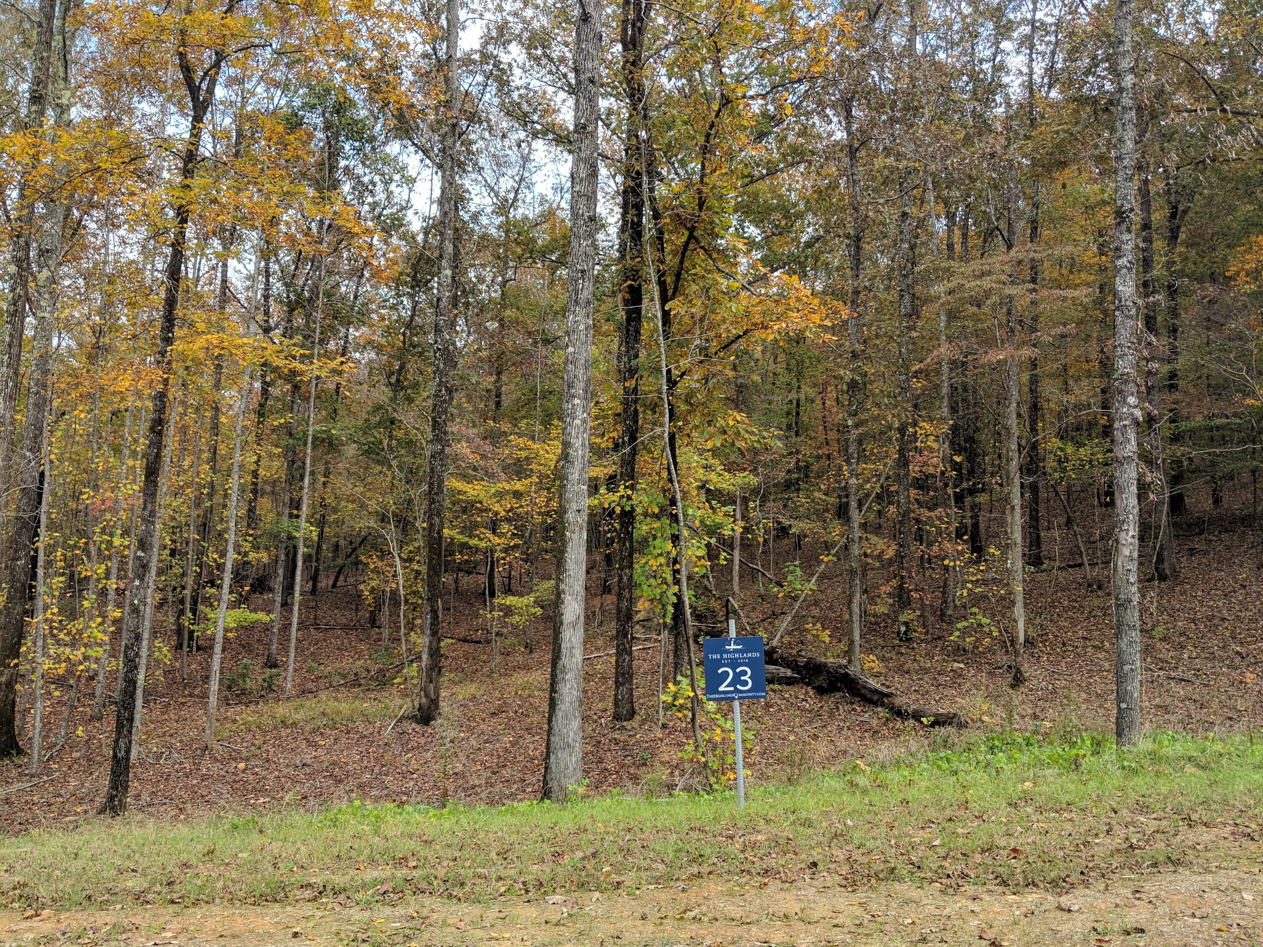 Homesite #23   List Price: $105,000  Size: 1 acre  Section: Chelsea  Street: Timberview Trail