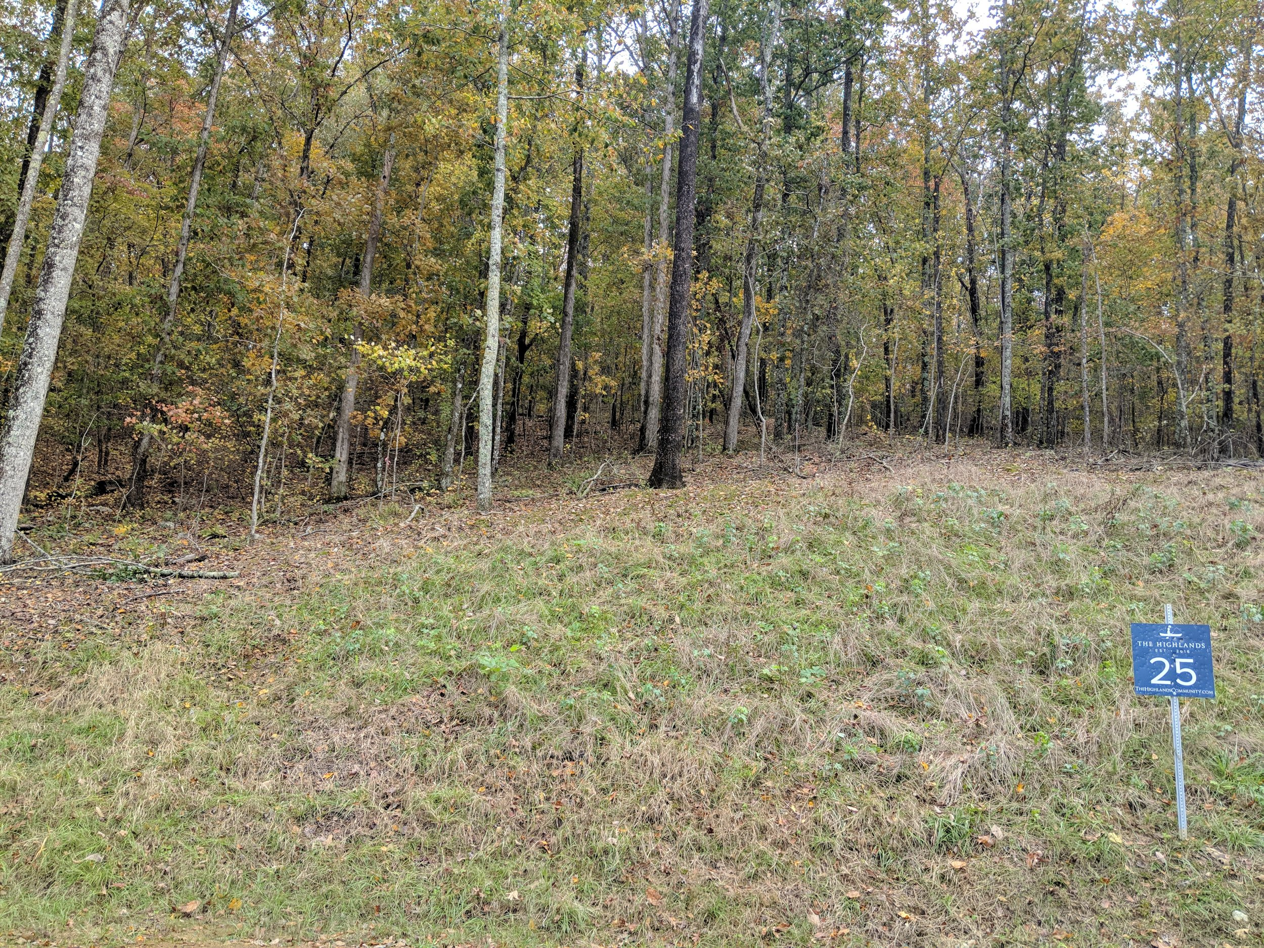 Homesite #25   List Price: $105,000  Size: 3.2 acres  Section: Chelsea  Street: Timberview Trail