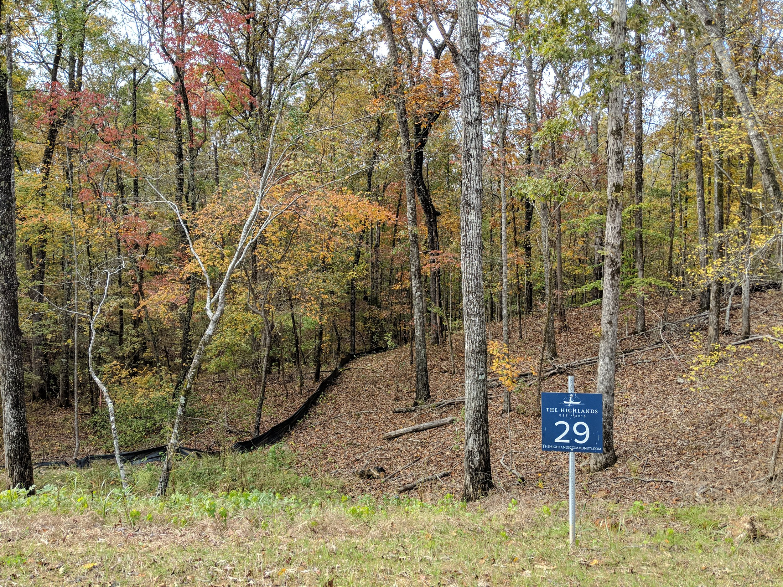 Homesite #29   List Price: $105,000  Size: 1.01 acres  Section: Chelsea  Street: Timberview Trail