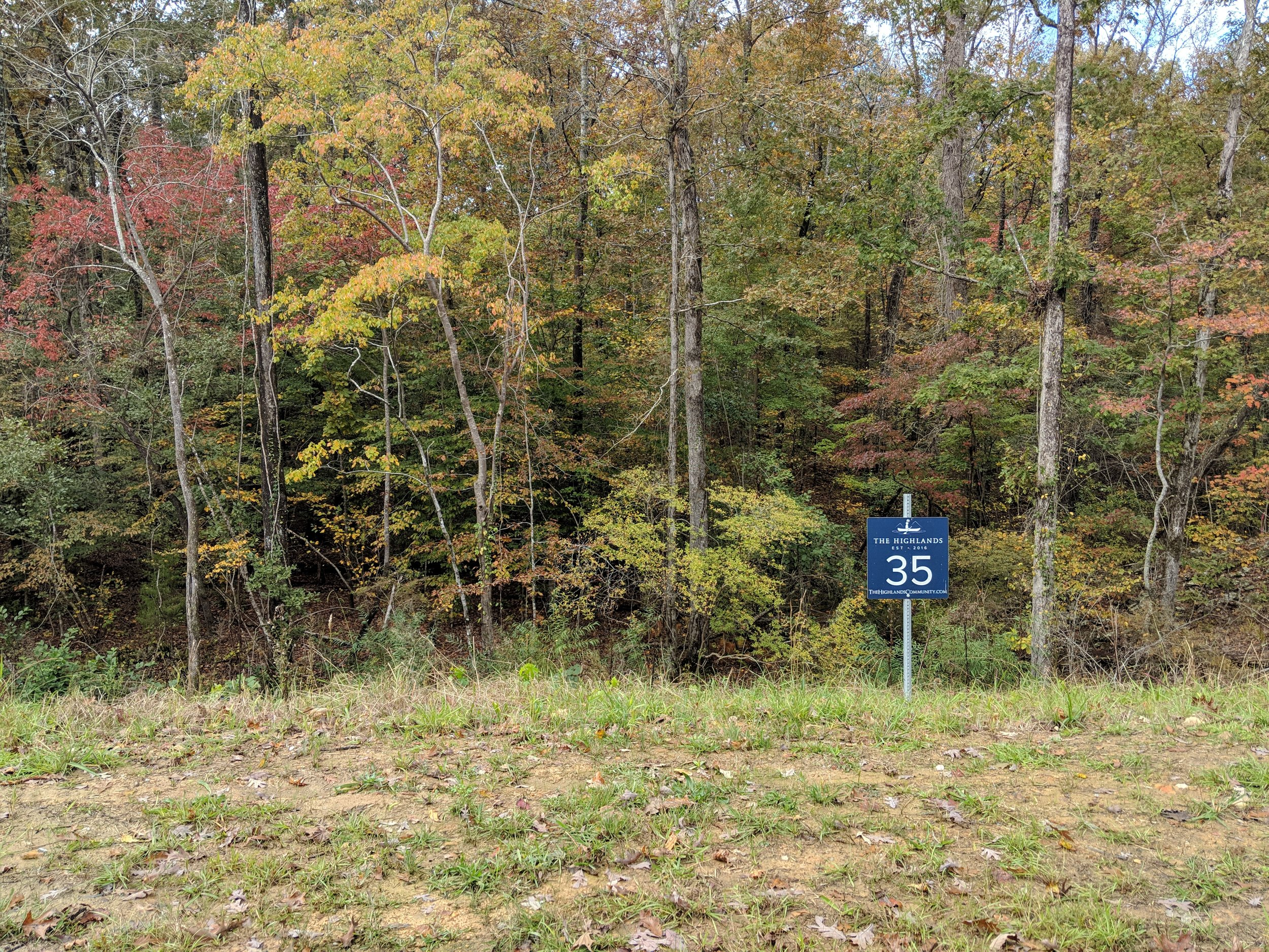 Homesite #35   List Price: $105,000  Size: 1.01 acres  Section: Chelsea  Street: Timberview Trail