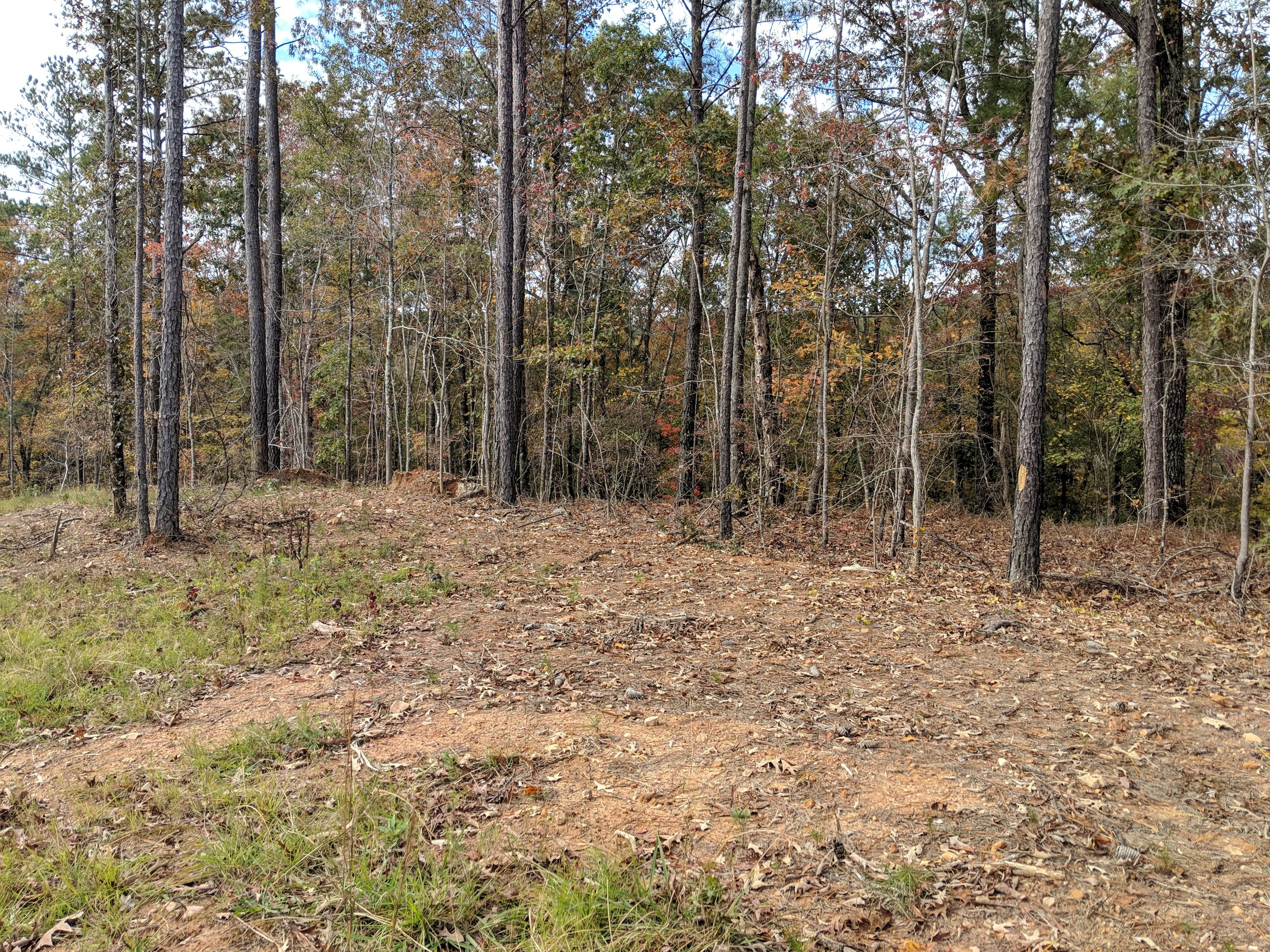 Homesite #38   List Price: $105,000  Size: 1.07 acres  Section: Chelsea  Street: Timberview Trail