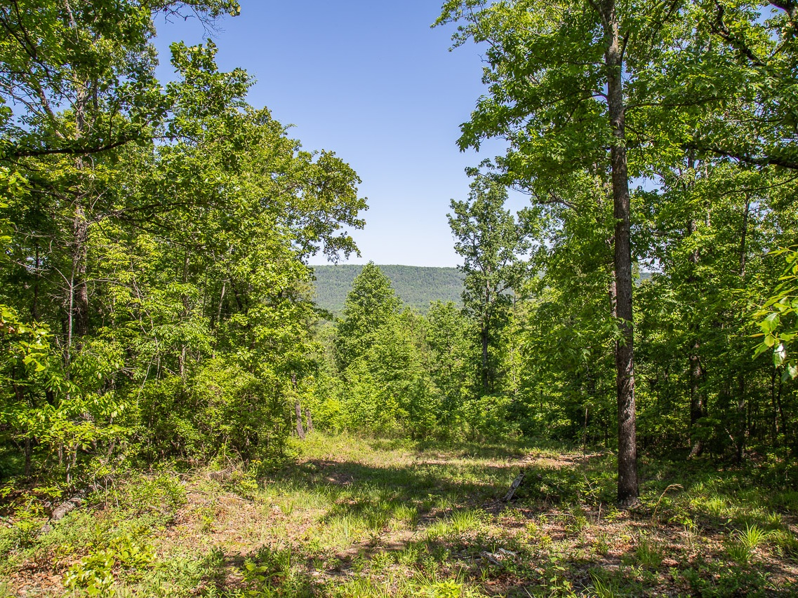 Homesite #22   List Price: $427,500  Size: 8.04 acres  Section: Pelham  Street: Two Mountain Parkway