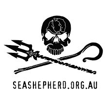 sea shepherd.png