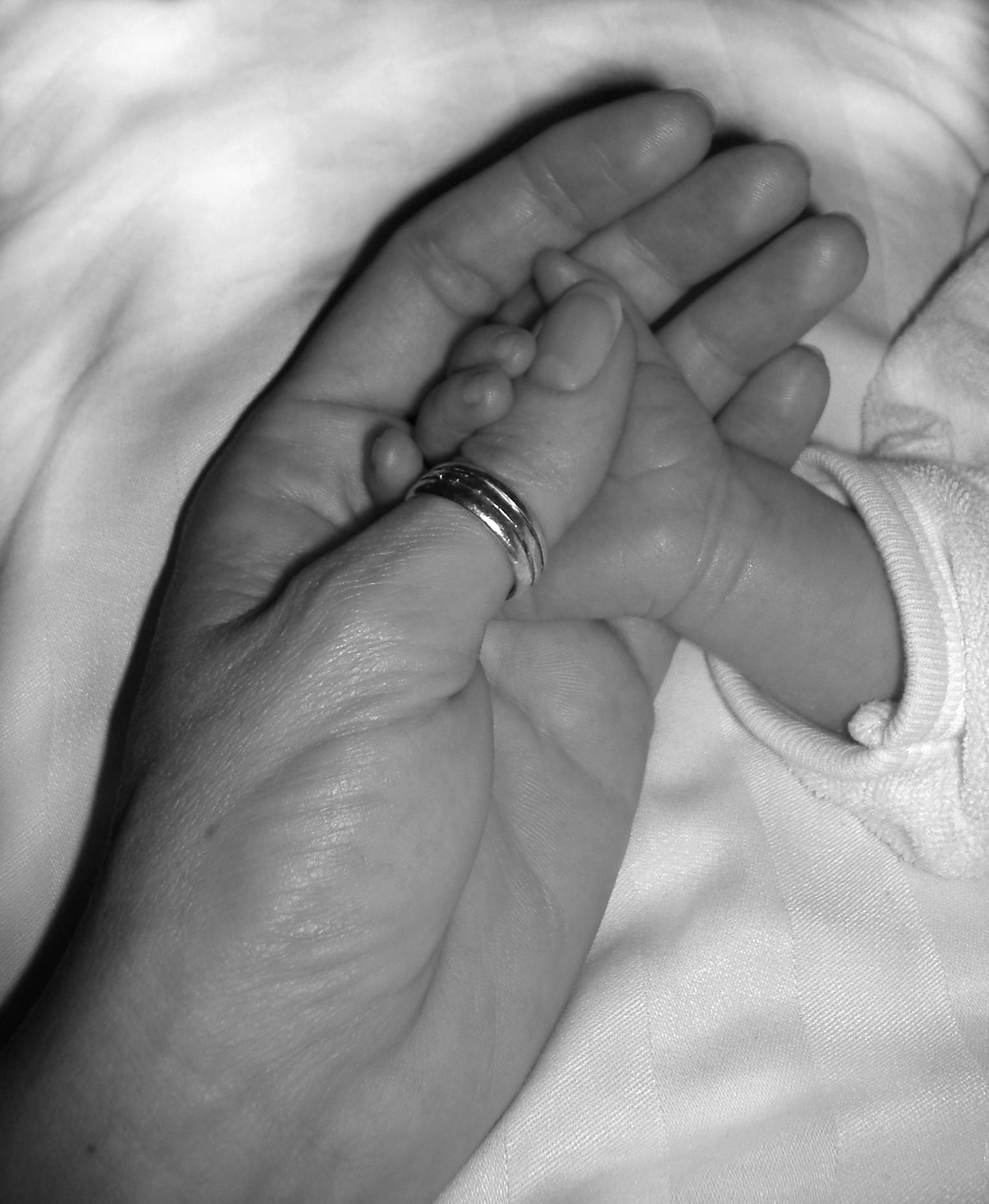 joint-hands-1313489.jpg