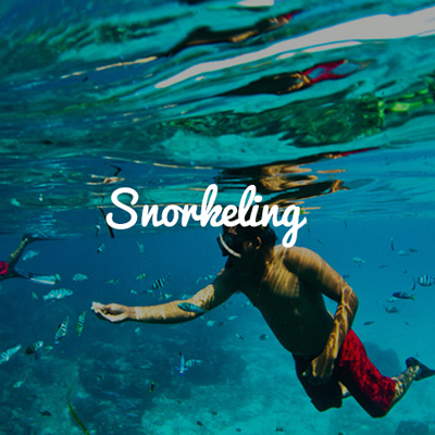 Go Snorkelling and Scuba Diving on our Group Trip