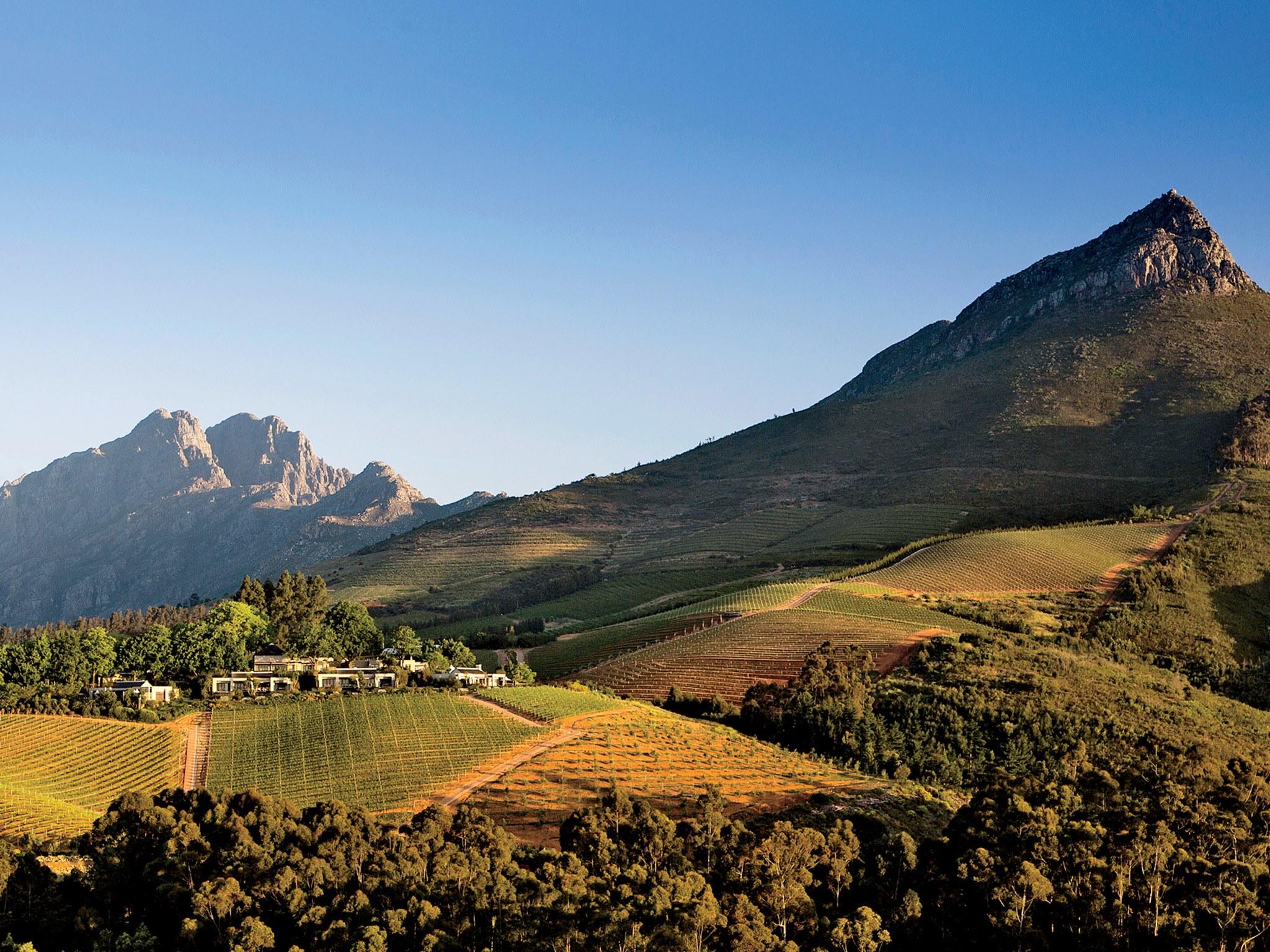 Stellenbosch borvidék - Nem hagyhatjuk ki a borokat sem, szerencsére az egyik legszebb borvidék alig egy órányi autózásra lesz tőlünk. Stellenbosch az ország bortermelésének és kutatásának a központja, egyben pedig az egyik legrégebbi városa is.