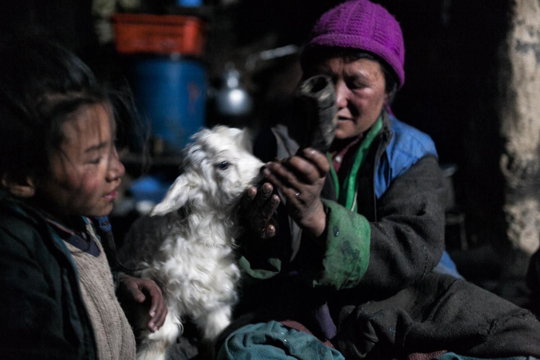 Ladakh. Inside an house in the Nerak village