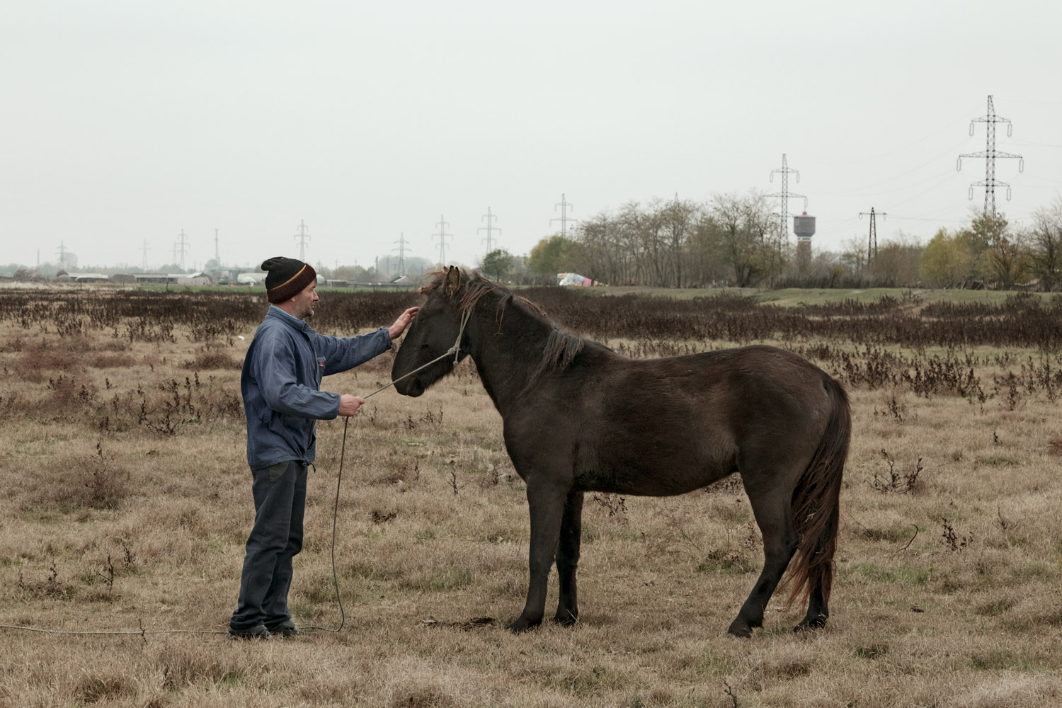 Sulina, Romania,November 2017. A man and his horse in the outskirts of the town.