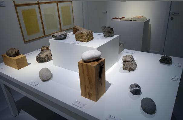herman de vries's stones from various parts of the world on display in 'on the stony path'