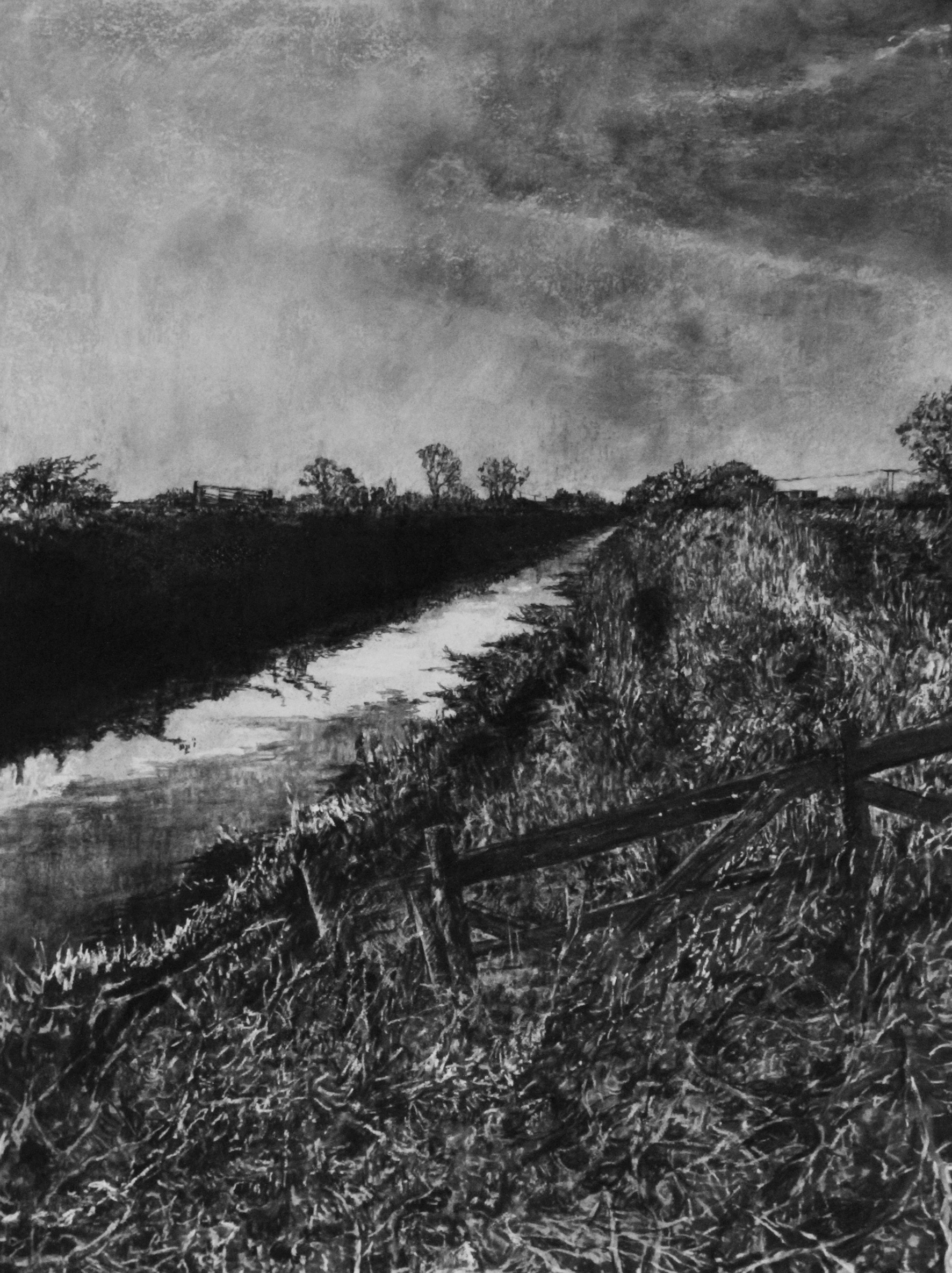 Judith Tucker,  Towpath,  2017, Charcoal, varnish and white pigment on arches paper. 76 x 56 cm