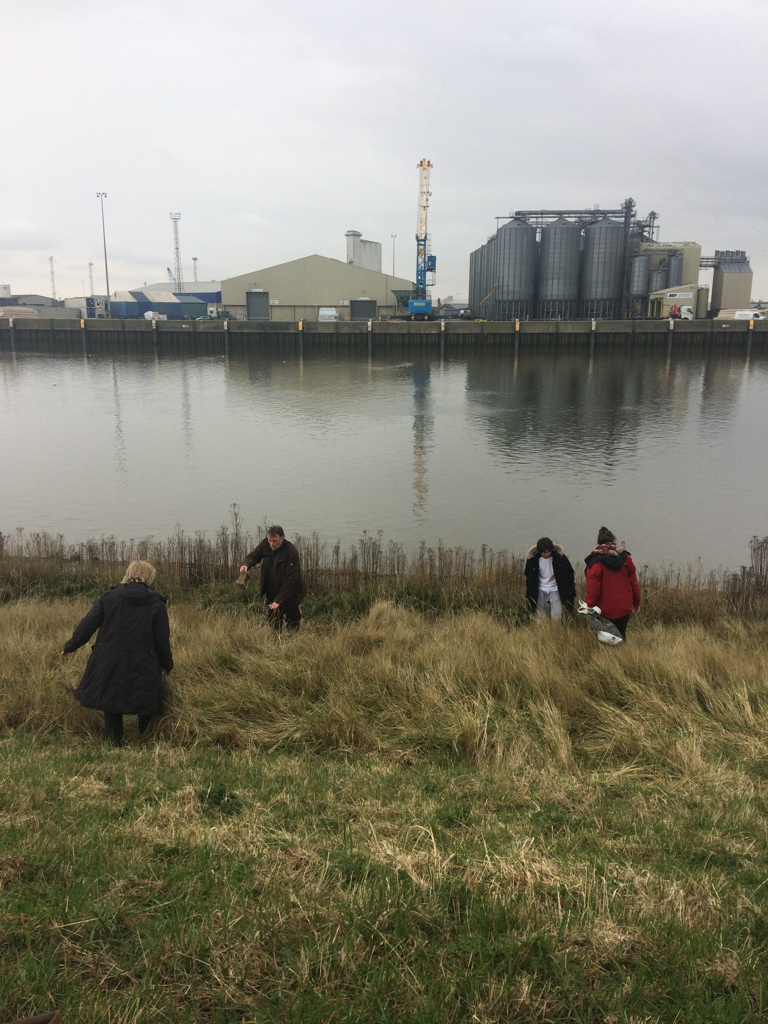 Collecting trash by the River Great Ouse