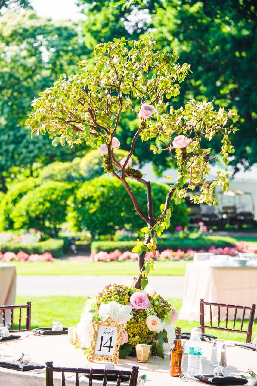 Blooming Orchid Tree Centerpiece