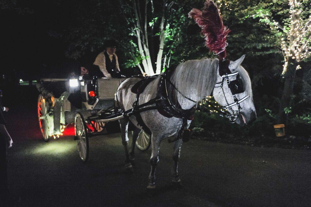 Getaway Carriage