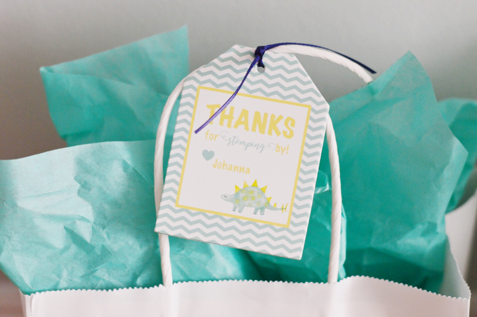 Birthday Party Gift Bags  Planning by Wrap It Up Parties